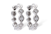 D001-09728: EARRINGS .22 TW